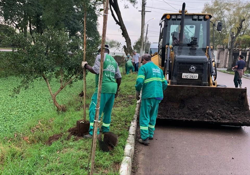 Adquirida pela Prefeitura, primeira leva de árvores é plantada no valão do Engenho