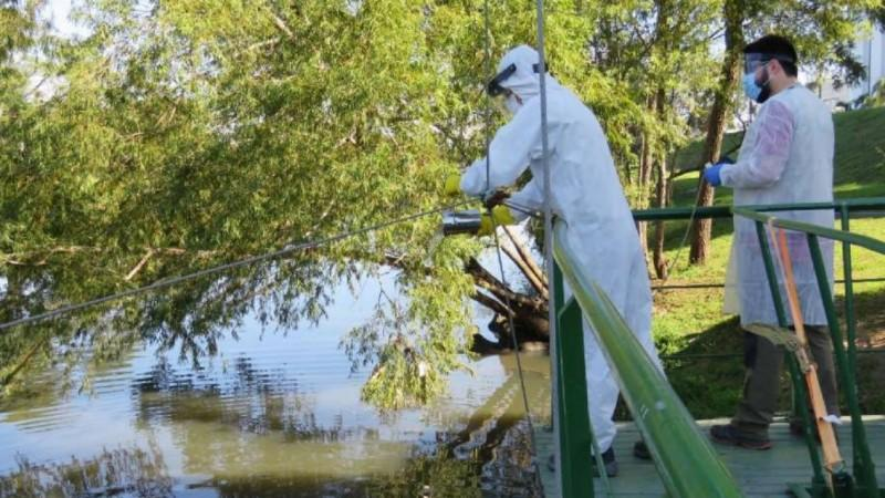 Desacelera detecção de carga viral de coronavírus em esgotos na Grande Porto Alegre