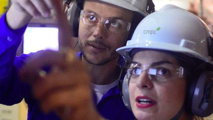 CMPC tem 12 vagas de níveis superior e técnico abertas para atuar em Guaíba; veja como se candidatar