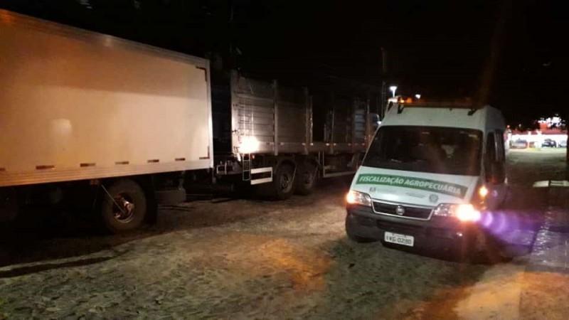 Dez toneladas de carne suína sem procedência são apreendidas em Torres