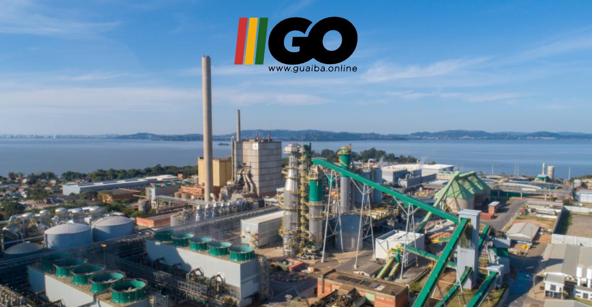 Mês do Meio Ambiente: confira seis frentes em que a CMPC atua para restauração de ecossistemas brasileiros